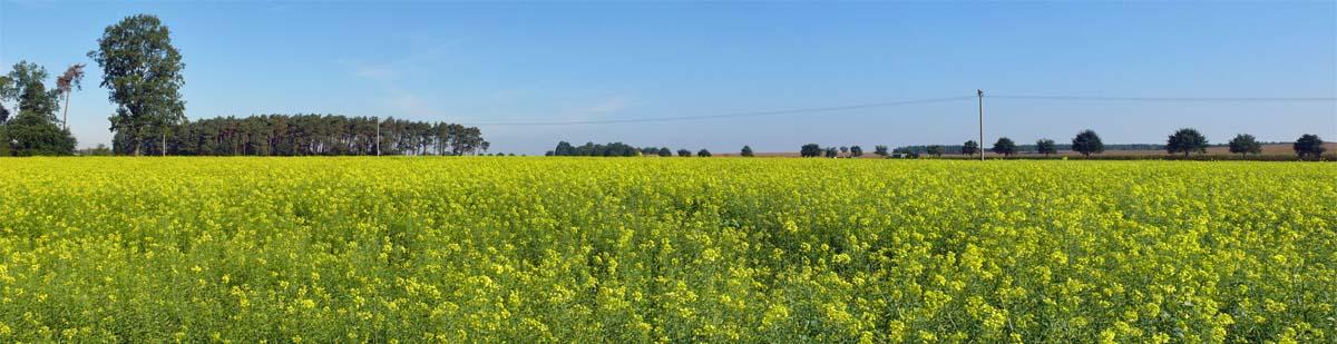 umweltschonende Landwirtschaft