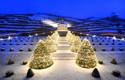 Schloss Wackerbarth zur Weihnachtszeit - Foto: PR